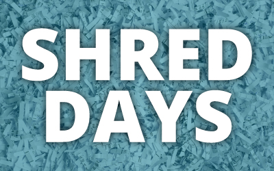 shredded papers