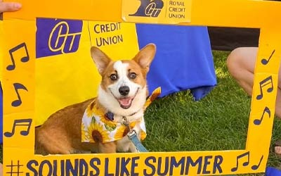 Photo of a dog at an event